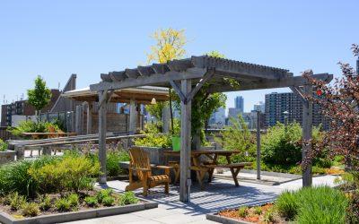 ravne zelene strehe prednosti in slabosti ravne strehe